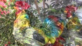 Статуэтки животных искусственные деревья цветы купить декор декоративные для сада дачи дома(, 2015-05-27T11:54:03.000Z)