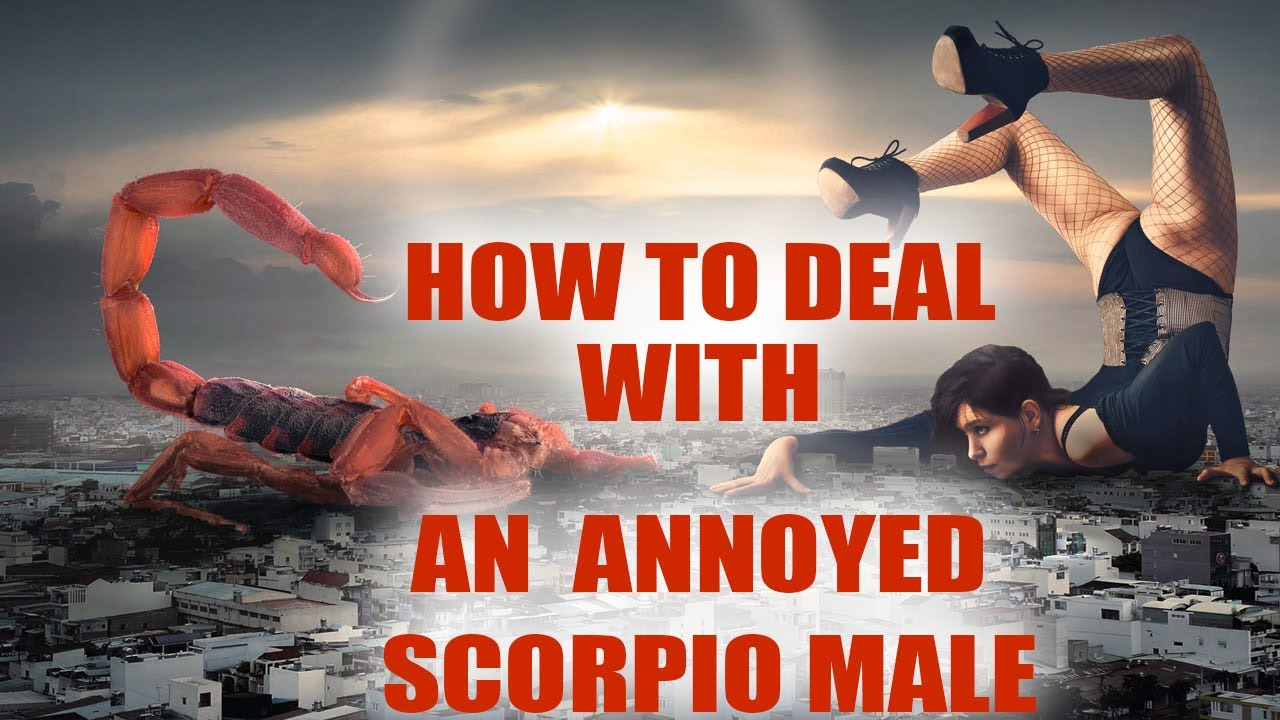 How to Handle a Scorpio Man After an Argument | Scorpio Men