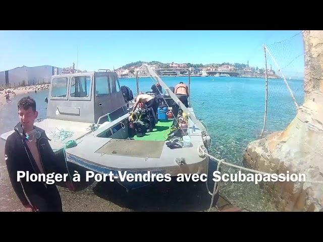 Plongée au Cap Gros by Nomad Diver Juillet 2017