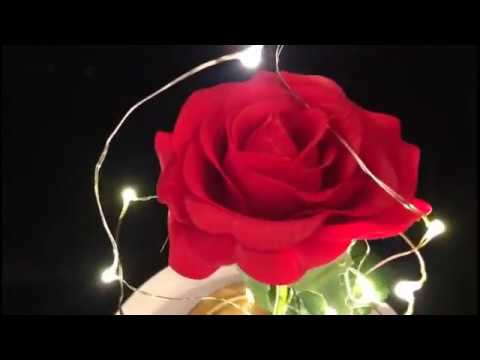 Lampe Rose Enchantee Youtube