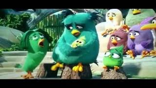Angry Bird Full Movie 2016 in Hindi