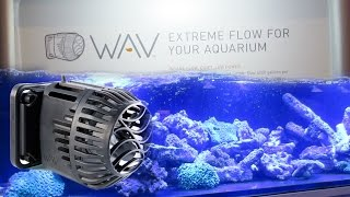 WATERFLOW in your Reef Tank with The WAV from Neptune Systems!