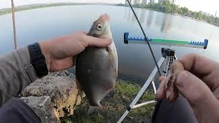 Фидерная рыбалка Ловля крупного леща и подлеща в Киеве