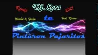 Yandar & Yostin Feat. Rivera - Te pintaron pajaritos (Dj. Lora remix 2012)