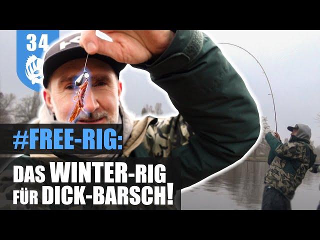 FREE-RIG - im freien FALL zum WINTERBARSCH!