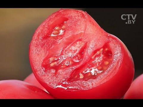 Как уменьшить количество нитратов в овощах: 4 простых способа
