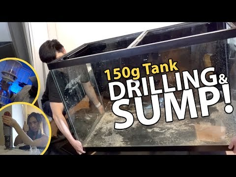 *HUGE* 150g Tank Build Updates! (150g - 5/20/2018)