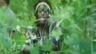 Frisco Kid - Revenge (Stepz Riddim) -CLEAR-