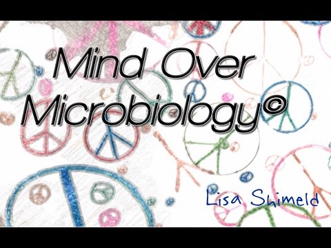 Microbial Metabolism Lecture