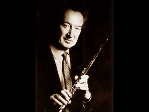 Hoffmeister   Flute Concerto No  17 in D major ~Maxence Larrieu~