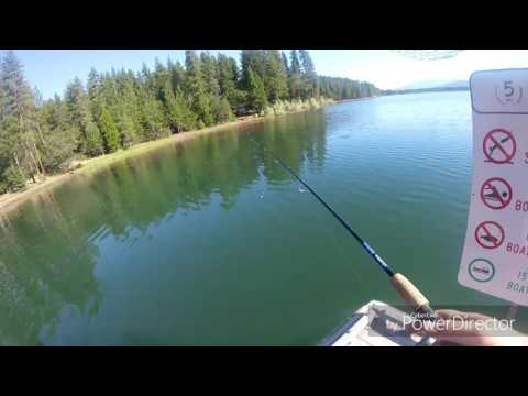 Catching Hundreds Of Spawning Perch!! Crystal Clear Oregon Lake - F*ck It Im Fishing