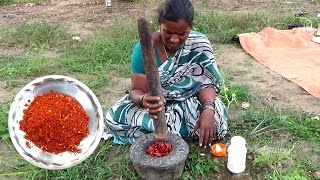 Village Style Spice Garlic Chilli Powder || Street Food Catalog || Food Info || Village Food Factory