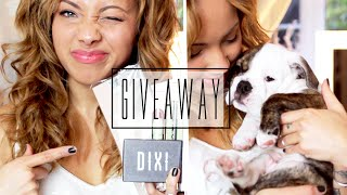 Update, New Puppy & Giveaway! ♡ {CLOSED} Thumbnail