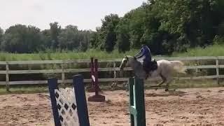 Allfails  girl in purple rides horse falls forward