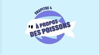 L214 EDUCATION / A propos des poissons (pêche, élevage)