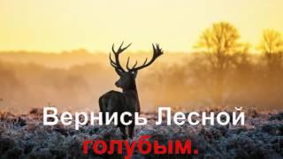 KARAOKE Лесной Олень КАРАОКЕ.mp4.mp4
