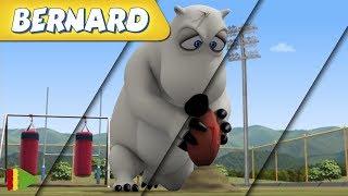 Bernard Bear | Zusammenstellung von Folgen | Rugby