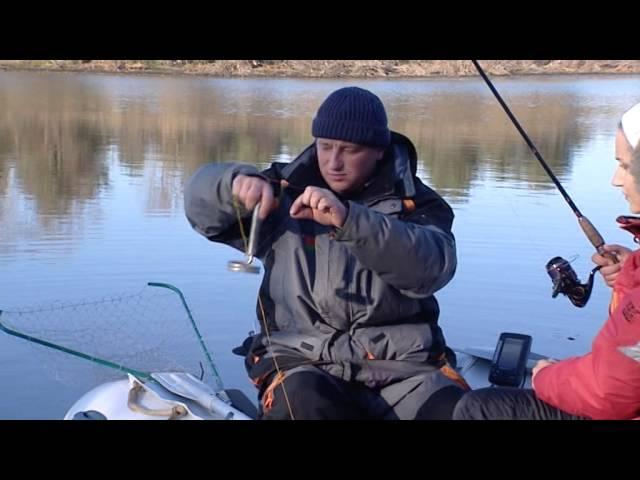прогноз клева рыбы славянск на кубани