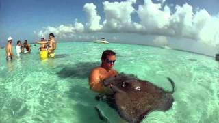Sting Ray City in Grand Cayman
