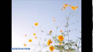 Magane Ninakayi - Malayalam Christian Devotional Song