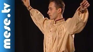 BM Duna Művészegyüttes: Hamupipőke IV. rész (mese, táncszínház)