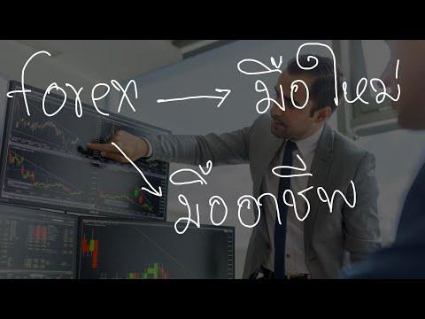 Forex มือใหม่ vs มืออาชีพ พรรษาของผู้เทรด  Forex | HelloGapp