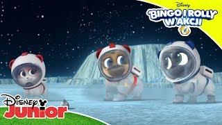 🚀 Kosmiczna przygoda | Bingo i Rolly w akcji! | Disney Junior Polska