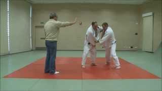Judo 2014 Referee Rules