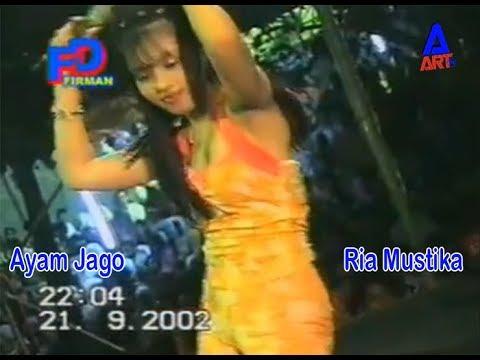 Ayam Jago Ria Mustika Om.Avita Lawas 2002 Nostalgia Classic