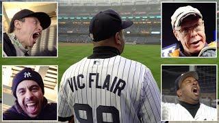 The FUNNIEST & CRAZIEST FANS at Yankee Stadium