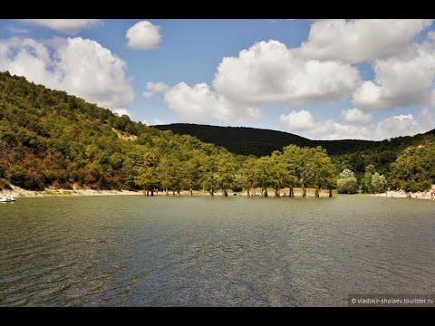 #Озеро Сукко, #Кипарисовое озеро, #Болотные Кипарисы, #Кипарисовое озеро Сукко,  #Кипарис в воде