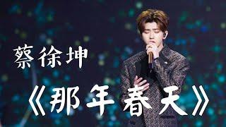 蔡徐坤CAI XU KUN - 那年春天 THAT SPRING (CHI/PIN)