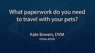 What paperwork do you need to travel with your pets