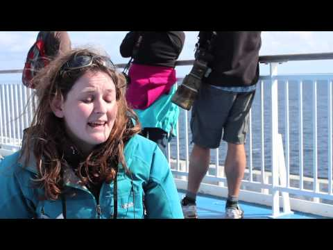 Whale and Dolphin Watching in the Bay of Biscay