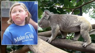 8-Year-Old With Brain Tumor Meets Koalas in Wish Come True