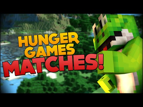 Hunger Games MATCHES - \