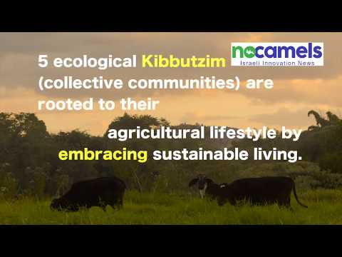 Israeli Kibbutzim Embracing Sustainable Living