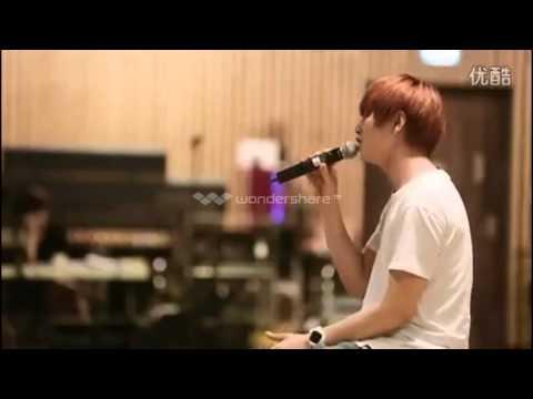 B1a4 sandeul solo 2014 cut