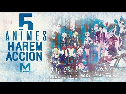 5 Animes De Harem Y Acción | Animes Harem Pt 1