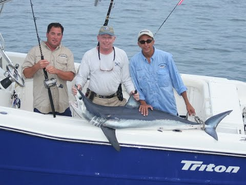 Shark Fishing - Martha's Vineyard, MA