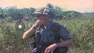 US Army Soldiers of First Infantry Division in Vietnam discover punji sticks in s...HD Stock Footage