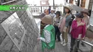 「シティーニュースおおた」平成26年5月16日~31日放送.