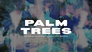 palm trees // p. cryptic