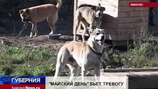 """""""МАЙСКИЙ ДЕНЬ"""" БЬЕТ ТРЕВОГУ"""