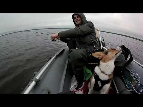 Озеро Пирос в Новгородская область, рыбалка C лодки на спининг