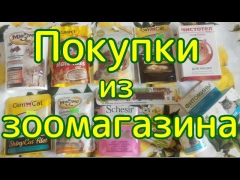 Покупки из зоомагазина на 1000 рублей.