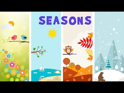 Seasons in Earth - video for kids