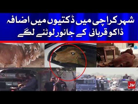 Robbers Began to rob Sacrificial Animals in Karachi