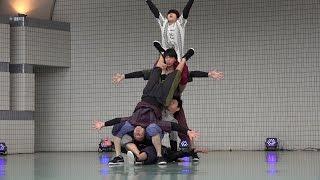 神奈川県立大和西高校 ダンス部