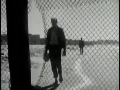 1950s psa homosexual